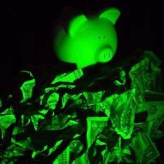 Piggy bank with crumpled dollar bills