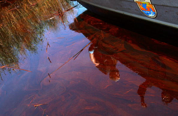 Gulf Coast Struggles With Oil Spill And Its Economic Costs