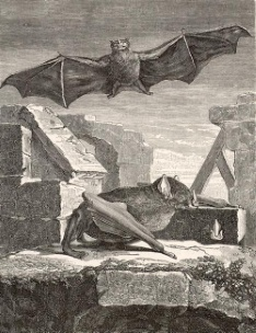 The Great Vampire Bat from Guyana. Engraving from Histoire Naturelle by George-Louis Leclerc, Comte de Buffon (Paris, 1749-1767).
